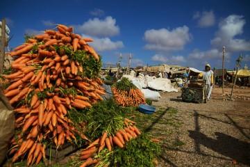 Suk, i mercati del Marocco