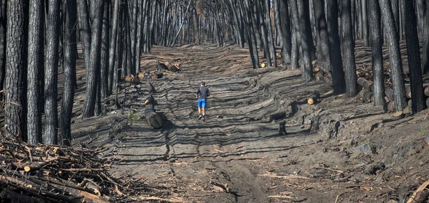 Rischio idrogeologico sul Vesuvio